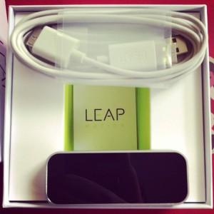 leap insides